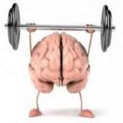 Bổ não, tăng trí nhớ (3)