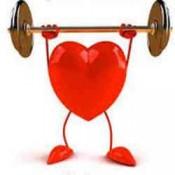 Bổ tim mạch, huyết áp (1)