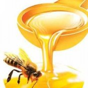 Sữa ong chúa, keo ong Australia (1)